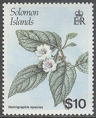 Solomon Islands - M  675 Blommor - Hemigraphis sp, märke kpl **