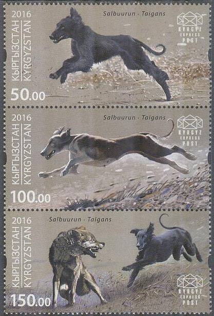 Kirgizistan - Express Post - M   30-32 Hundar - Taigan Hundar, 3-strip kpl **