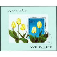 Afghanistan - M BL  93 Tulpanodling, block stpl